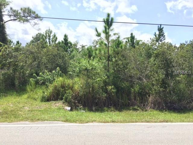 4812 N Fort Christmas Road, Christmas, FL 32709 (MLS #O5533615) :: The Duncan Duo Team