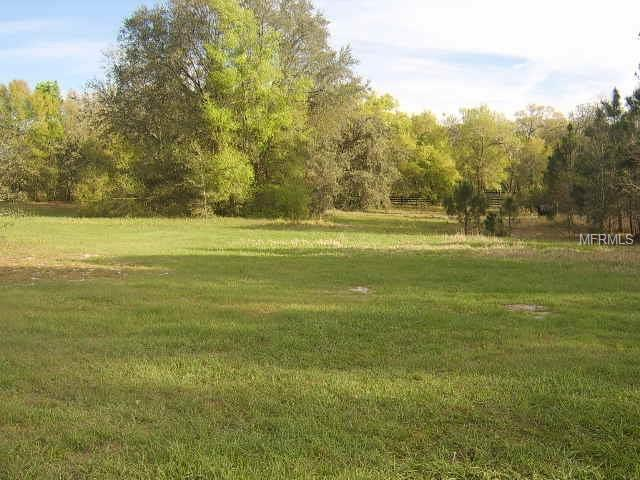 Gopher Road, Howey in the Hills, FL 34737 (MLS #O5570380) :: Griffin Group