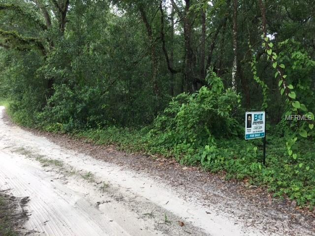 Sw 123Rd, Webster, FL 33597 (MLS #O5719154) :: The Duncan Duo Team