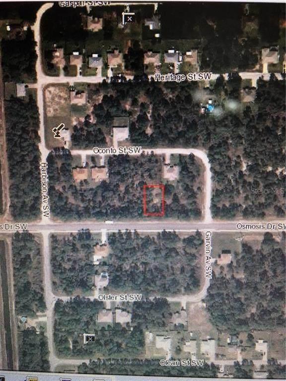 331 Osmosis Drive SW, Palm Bay, FL 32908 (MLS #O5728365) :: Team Bohannon Keller Williams, Tampa Properties