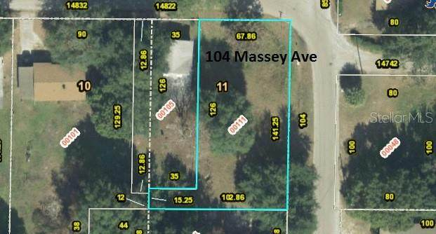 104 Massey Avenue, Winter Garden, FL 34787 (MLS #O5785314) :: CGY Realty