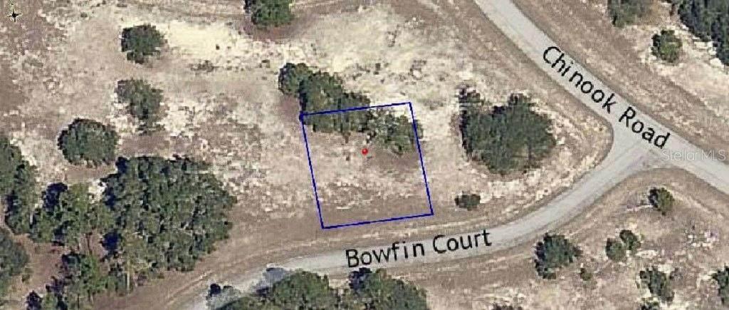 Bowfin Court - Photo 1