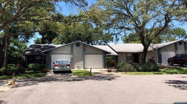 39650 Us Highway 19 N #132, Tarpon Springs, FL 34689 (MLS #O5794770) :: Gate Arty & the Group - Keller Williams Realty Smart