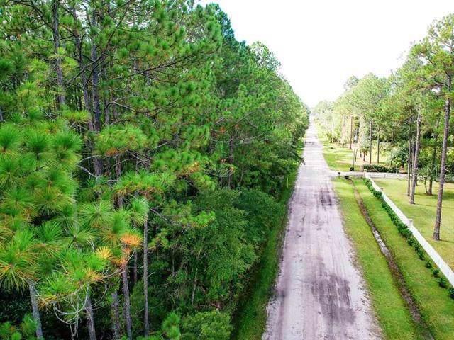 2700 C H Arnold Road Lot 14E, Saint Augustine, FL 32092 (MLS #O5806900) :: 54 Realty