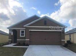 436 Tanglewood Drive, Davenport, FL 33896 (MLS #O5813450) :: Premium Properties Real Estate Services