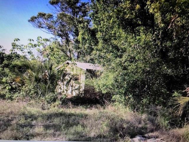 9831 County Road 44 Road, Leesburg, FL 34788 (MLS #O5817525) :: Burwell Real Estate