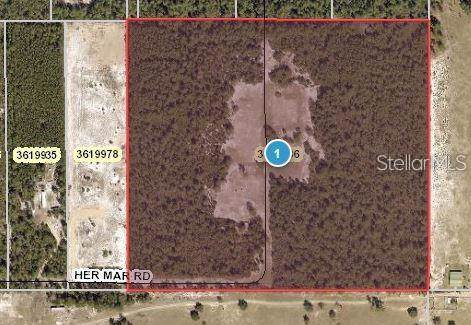 26735 Her Mar Road, Paisley, FL 32767 (MLS #O5836172) :: Bustamante Real Estate
