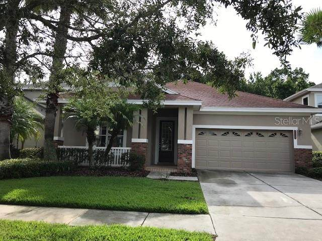 20024 Heritage Point Drive, Tampa, FL 33647 (MLS #O5846682) :: Carmena and Associates Realty Group