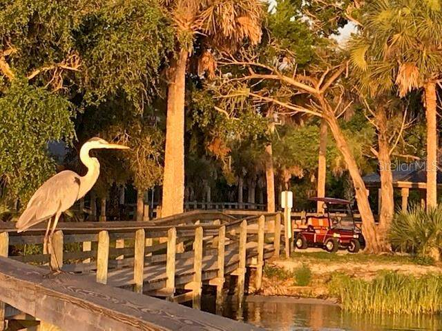 243 Golden Bay Boulevard, Oak Hill, FL 32759 (MLS #O5881387) :: Cartwright Realty
