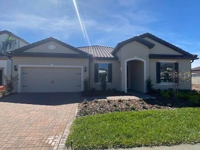 7875 Wandering Way, Orlando, FL 32836 (MLS #O5917308) :: Key Classic Realty