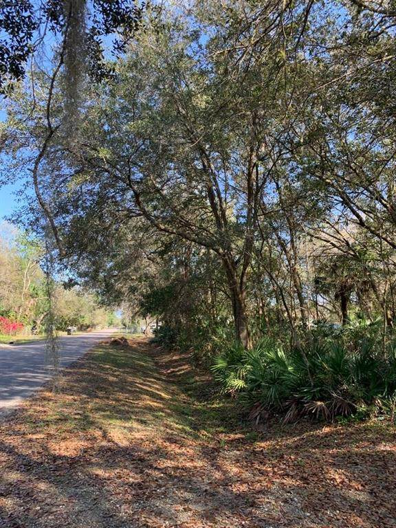 2801 4TH Street, Orlando, FL 32820 (MLS #O5924147) :: Florida Life Real Estate Group