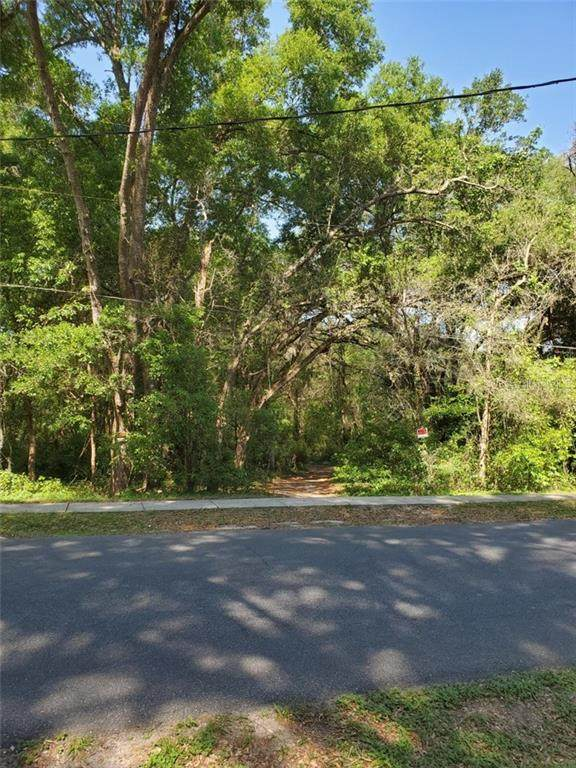 xxx Summit Street, Lady Lake, FL 32159 (MLS #O5936892) :: Visionary Properties Inc