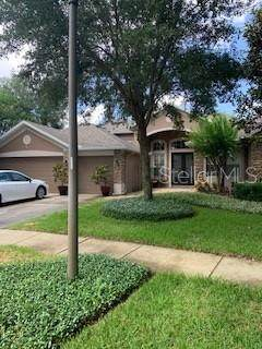 10521 Oakview Pointe Terrace, Gotha, FL 34734 (MLS #O5943456) :: The Price Group