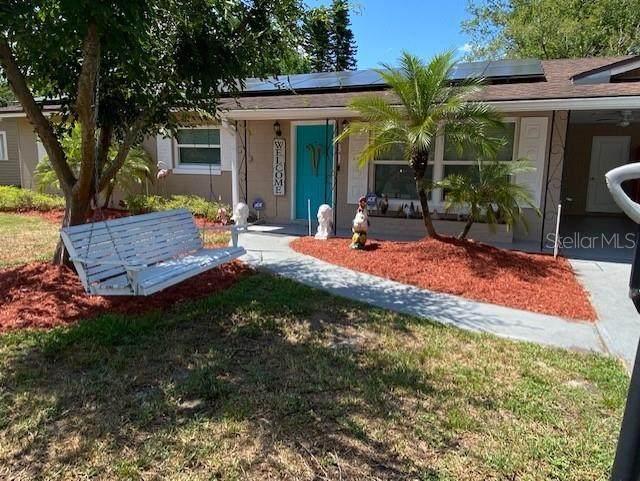 431 Tullis Avenue, Longwood, FL 32750 (MLS #O5947973) :: Young Real Estate