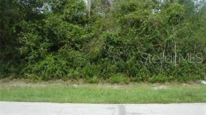 2982 Day Road, Deltona, FL 32738 (MLS #O5949482) :: Griffin Group