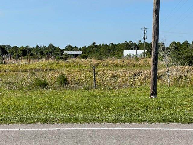 30600 State Road 62, Duette, FL 34219 (MLS #O5953387) :: Kelli and Audrey at RE/MAX Tropical Sands
