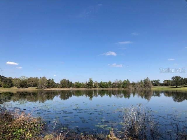 00 SE 156TH PLACE ROAD, Weirsdale, FL 32195 (MLS #OM601551) :: BuySellLiveFlorida.com