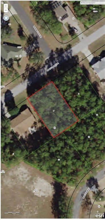 1952 W Rutland Drive, Citrus Springs, FL 34434 (MLS #OM601778) :: Bustamante Real Estate