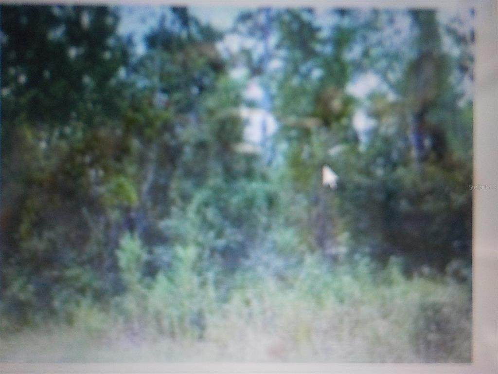 10905 157 Lane - Photo 1