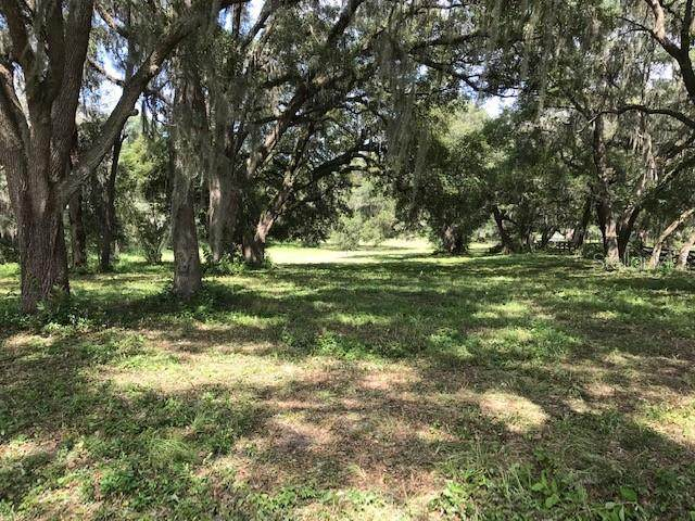 00 SE Highway 41, Morriston, FL 32668 (MLS #OM605978) :: Lockhart & Walseth Team, Realtors