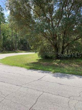 0 SW 138TH STREET Road, Ocala, FL 34473 (MLS #OM607391) :: Zarghami Group