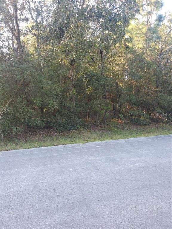 LOT 10 Spring Lane, Ocala, FL 34472 (MLS #OM610814) :: Griffin Group