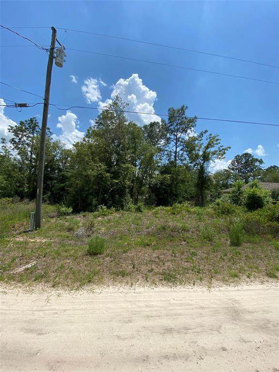 SW 19TH Place, Ocala, FL 34481 (MLS #OM619107) :: Armel Real Estate