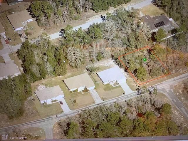 3249 W Babcock Place, Citrus Springs, FL 34433 (MLS #OM623868) :: RE/MAX Elite Realty