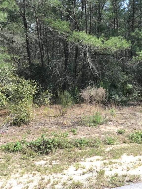 SW 131ST LANE, Ocala, FL 34473 (MLS #OM623914) :: Gate Arty & the Group - Keller Williams Realty Smart