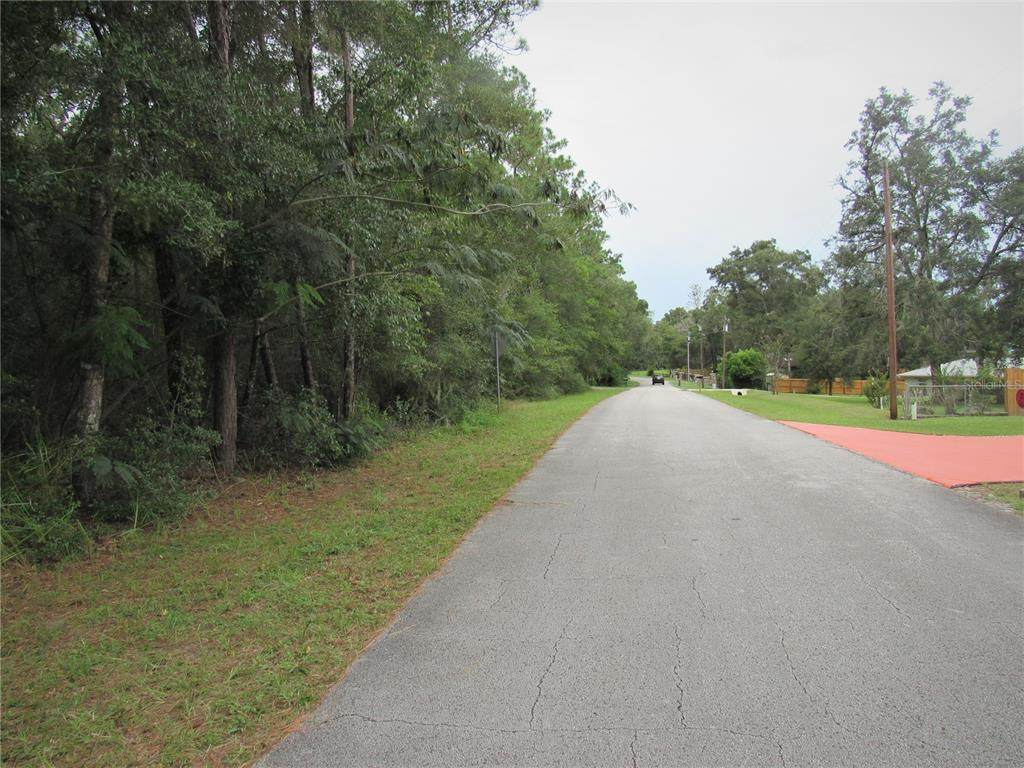 12790 River Garden Drive - Photo 1