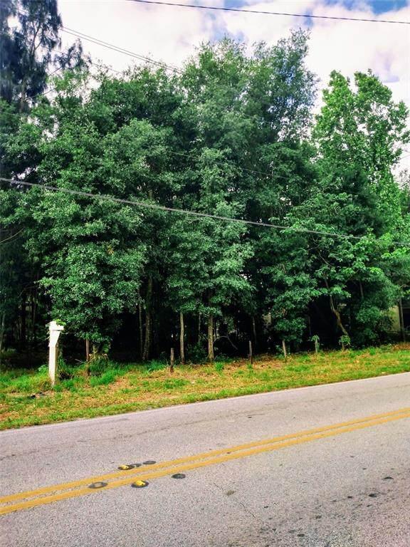 Cypress Gardens Rd - Photo 1