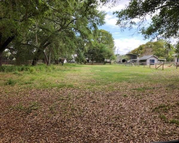 0 Recker Highway, Winter Haven, FL 33880 (MLS #P4910203) :: Rabell Realty Group