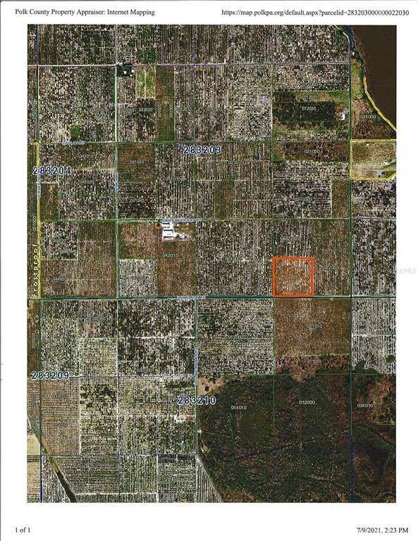 T S Wilson Road, Frostproof, FL 33843 (MLS #P4916436) :: Frankenstein Home Team
