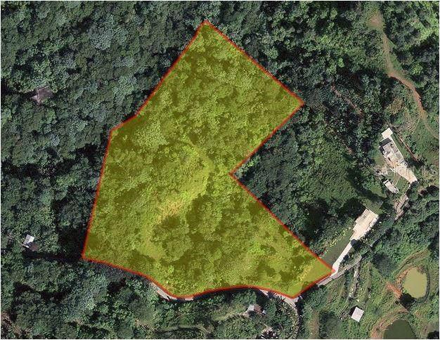 Pr-5521 #1, ADJUNTAS, PR 00601 (MLS #PR9088711) :: Bustamante Real Estate