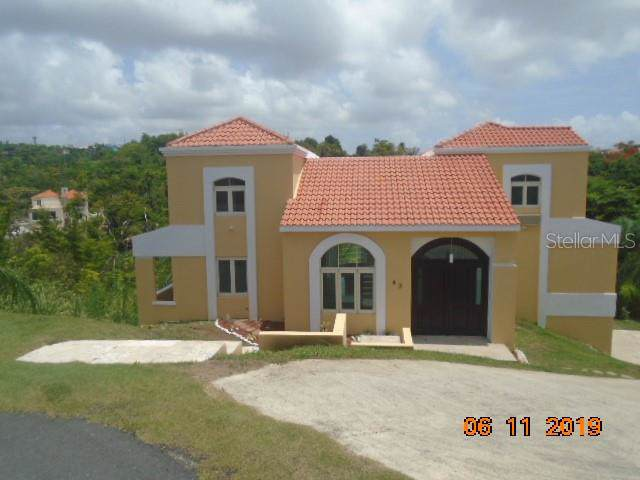 43 Cocoloba, HUMACAO, PR 00791 (MLS #PR9089359) :: Griffin Group