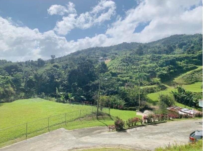 CARR 745 KM2 Barrio Espino - Photo 1