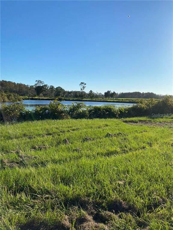 Swamp Drive, Groveland, FL 34736 (MLS #R4903987) :: Bob Paulson with Vylla Home
