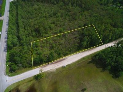 Holopaw Road, Saint Cloud, FL 34773 (MLS #S5000340) :: Mark and Joni Coulter | Better Homes and Gardens