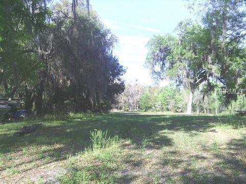 Locke Road, Davenport, FL 33837 (MLS #S5001596) :: The Duncan Duo Team