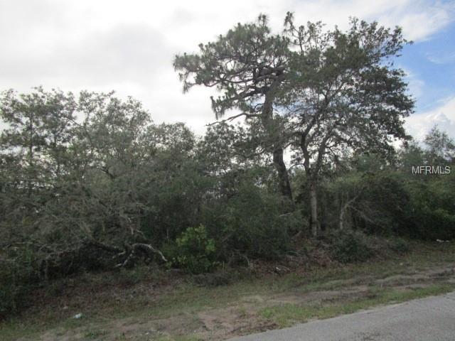 1211 Apopka Lane, Poinciana, FL 34759 (MLS #S5001752) :: The Duncan Duo Team