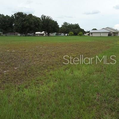 8217 Cozumel Lane, Sebring, FL 33876 (MLS #S5011021) :: The Duncan Duo Team