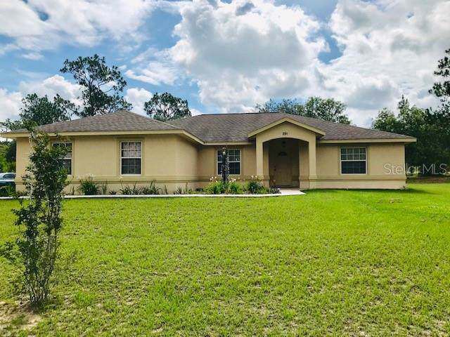 291 NW Crocus Lane, Dunnellon, FL 34431 (MLS #S5019435) :: Mark and Joni Coulter | Better Homes and Gardens
