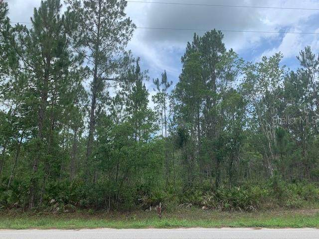 Oil Well Road, Clermont, FL 34714 (MLS #S5052411) :: Armel Real Estate