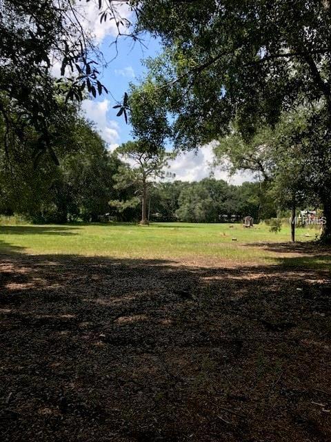 8713 Gardner Road, Tampa, FL 33625 (MLS #T2894428) :: Griffin Group
