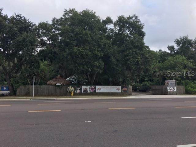 453 W Dr Martin Luther King Jr Boulevard, Seffner, FL 33584 (MLS #T2908728) :: MVP Realty