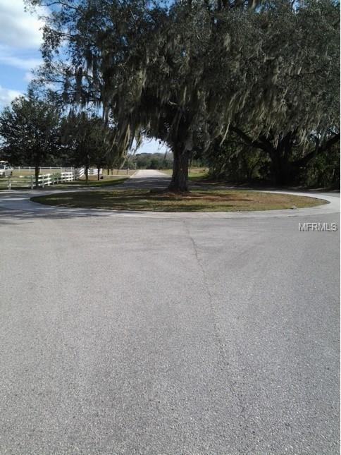 8504 Alafia Hills Drive, Plant City, FL 33567 (MLS #T2916932) :: The Duncan Duo Team