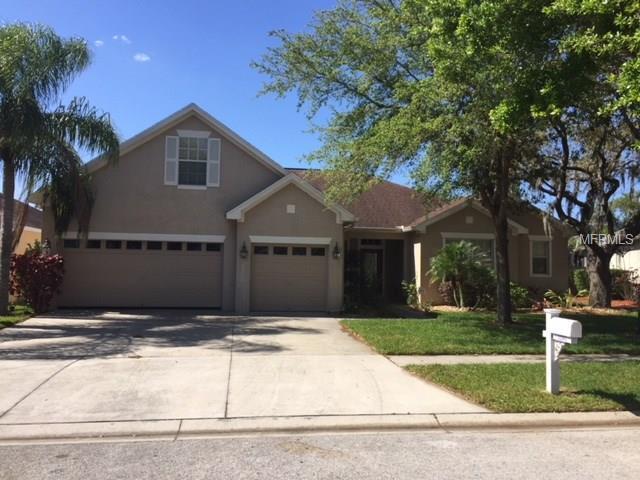 12505 Safari Lane, Riverview, FL 33579 (MLS #T2922068) :: The Duncan Duo Team