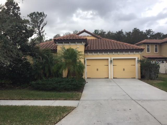 20322 Chestnut Grove Drive, Tampa, FL 33647 (MLS #T2928752) :: Team Bohannon Keller Williams, Tampa Properties