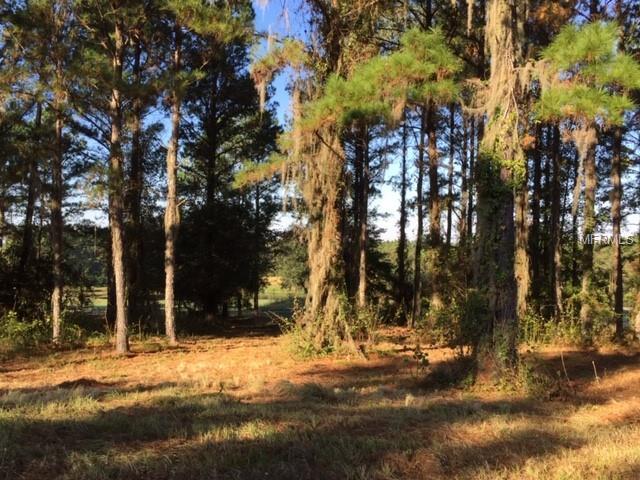 5053 Majestic Hills Loop, Brooksville, FL 34601 (MLS #T3113262) :: Homepride Realty Services