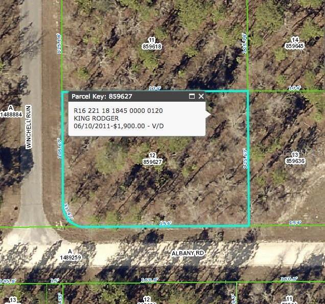 Winchell Run, Weeki Wachee, FL 34614 (MLS #T3145684) :: Rabell Realty Group